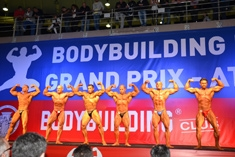2013 IFBB 1st Elite Grand Prix